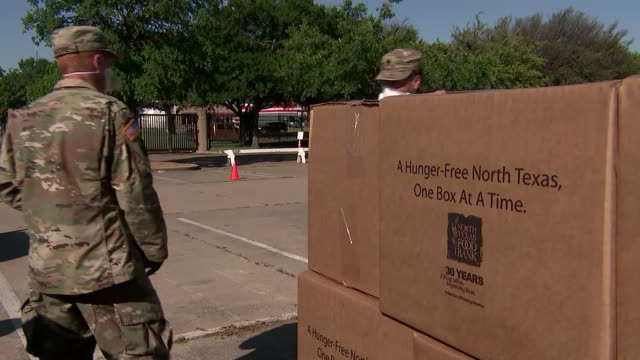 members of the national guard deliver boxes to a truck at a food bank distribution area in dallas, texas during the covid-19 outbreak. - healthcare and medicine or illness or food and drink or fitness or exercise or wellbeing stock videos & royalty-free footage