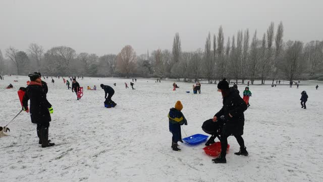 members of the public bring and ride in their sleighs in the snowy weather at horniman gardens park and museum on january 24, 2021 in london, united... - snow stock videos & royalty-free footage