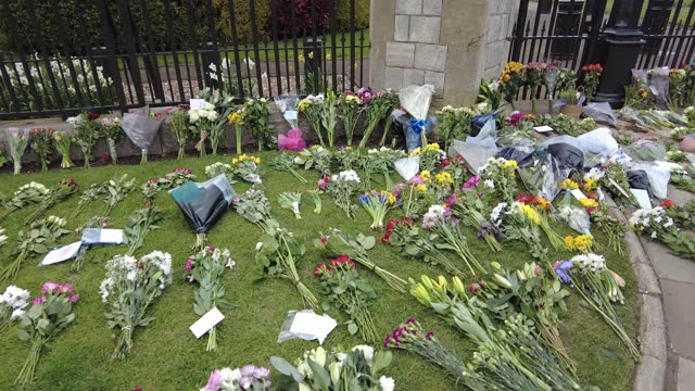 members of the public lay flowers as tribute to prince philip, duke of edinburgh who died at age 99 outside buckingham palace on april 10, 2021 in... - reclining stock videos & royalty-free footage