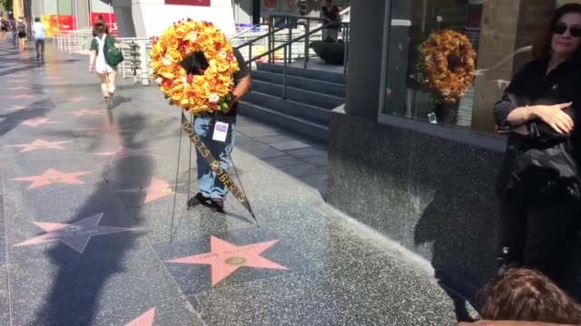 memorial flowers laid at doris roberts' star on the hollywood walk of fame - doris roberts stock videos & royalty-free footage