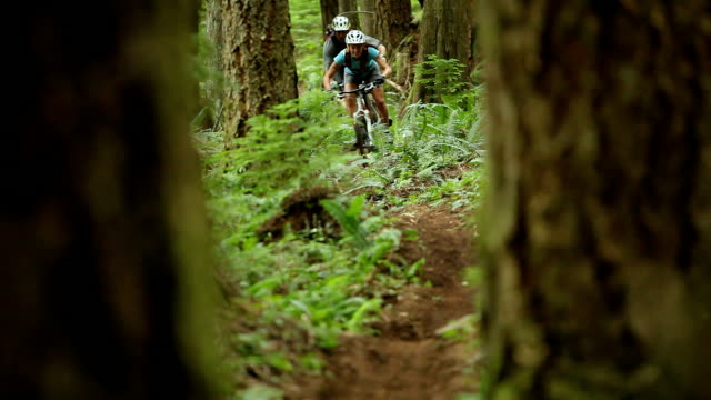 MS R/F Men and woman mountain biking through forest / Squamish, British Columbia, Canada