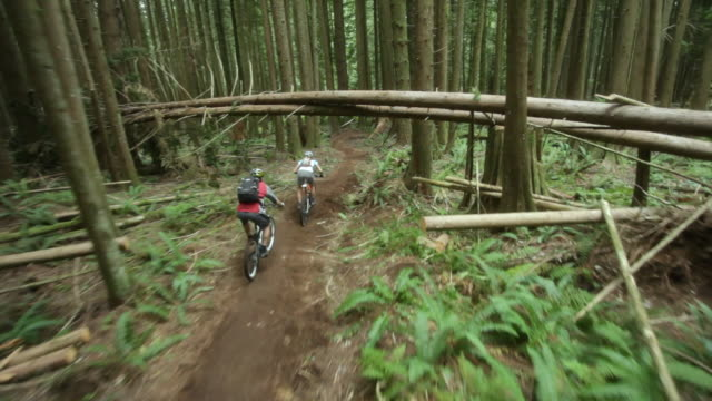 ws pov men and woman mountain biking through forest / squamish, british columbia, canada - helm stock-videos und b-roll-filmmaterial
