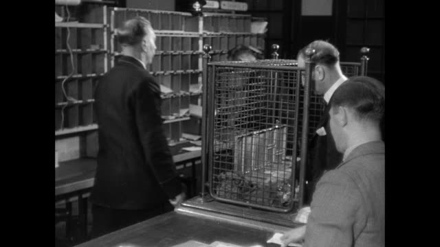 montage men and women lining up at the post office to receive their wages / united kingdom - 1937 stock videos & royalty-free footage