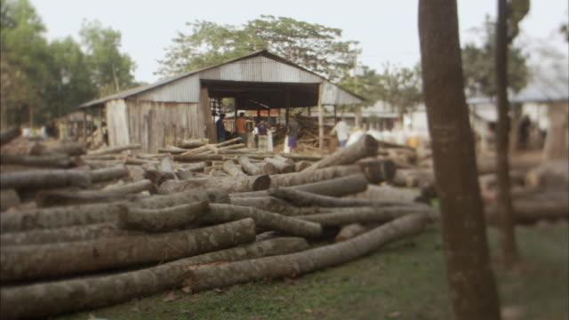 MS, SELECTIVE FOCUS, Men carrying heavy sacks between logs lying outside lumber mill, Mawna, Bangladesh