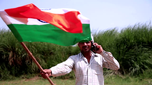 men carrying national flag - democracy stock videos and b-roll footage