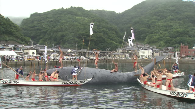 Men catch a model whale as part of a Japanese whale festival.