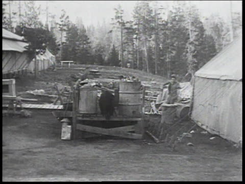 1934 ws men chase a wild bear out of their camp - 1934 stock videos & royalty-free footage