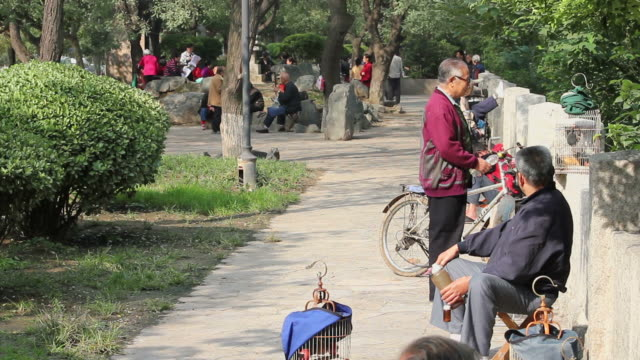 LS Men chating in park/xian,shaanxi,China