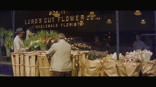 ms men checking flower and working in flower shop / new york city, new york state, united states  - fioraio negozio video stock e b–roll