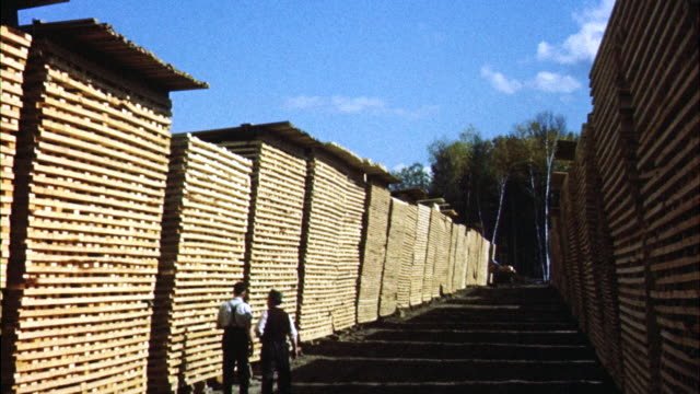 ms men checking piles of lumber drying in lumber yard / canada  - lumberyard stock videos and b-roll footage