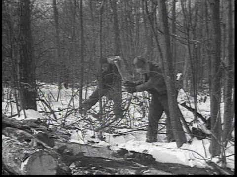 1934 montage men chop down trees, cut trees into firewood chunks and then line up for a hot dinner / united states - 1934 stock videos & royalty-free footage