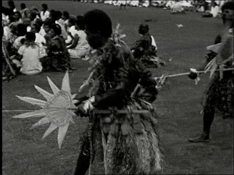 men with afro hairdos doing fierce ceremonal dance in grass skirts with spears, large frond shaped shields, and flower necklaces. pan across faces of... - frond stock videos & royalty-free footage