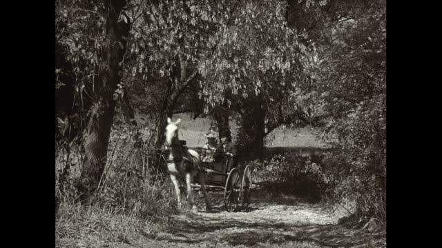 WS Men driving early car and couple driving horsedrawn carriage in forest / United States