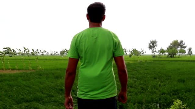 uomo godendo la natura - braccio umano video stock e b–roll