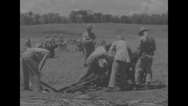 men filling sandbags / vs barrel of field gun sweaty shirtless men digging in a hole with pan up to gun / vs men cutting into and drinking from... - bajonett stock-videos und b-roll-filmmaterial