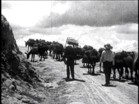 1930 ws men following herd of donkeys carrying goods up hill / mexico city, mexico - 1930 stock-videos und b-roll-filmmaterial
