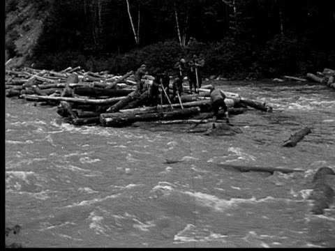 1927 B/W MONTAGE WS Men freeing logs trapped along river, Ontario, Canada