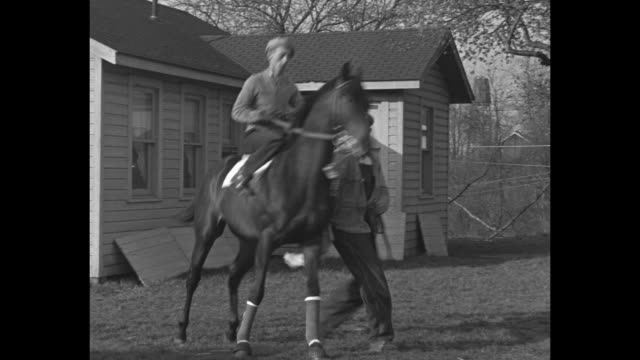 ms men groom horse / war admiral in stall / war admiral in blanket / vs jockey on spirited horse in training area / vs horse / vs jockeys and horses... - horse blanket stock videos & royalty-free footage