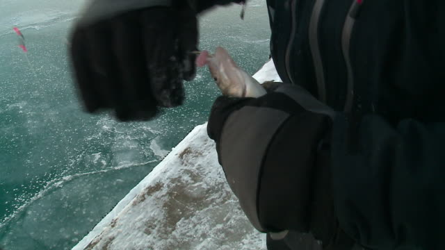 WGN Men Ice Fishing in Lake Michigan in Chicago on Dec 31 2017
