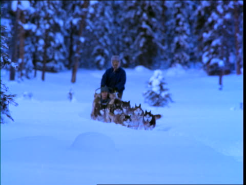 2 men in dogsled riding towards camera with forest in background