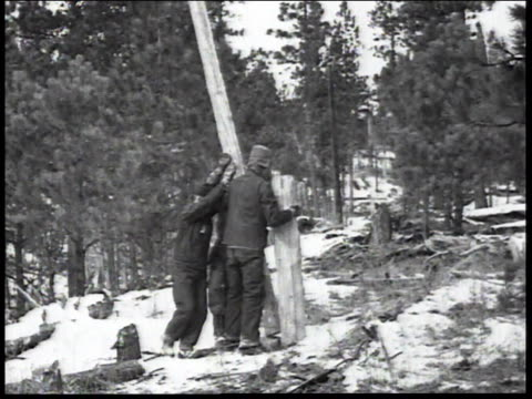 1936 montage men in forest erecting a pole and securing logs together for civilian conservation corps / united states - civilian conservation corps stock-videos und b-roll-filmmaterial