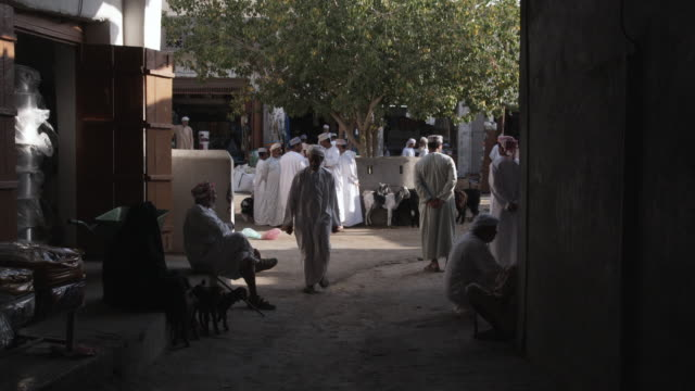 ws men in souk selling and buying livestock, bahla, oman - medium group of animals stock videos & royalty-free footage