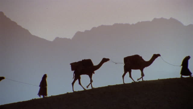 WS RECREATION Men leading camel caravan up hill near mountain range / Iran