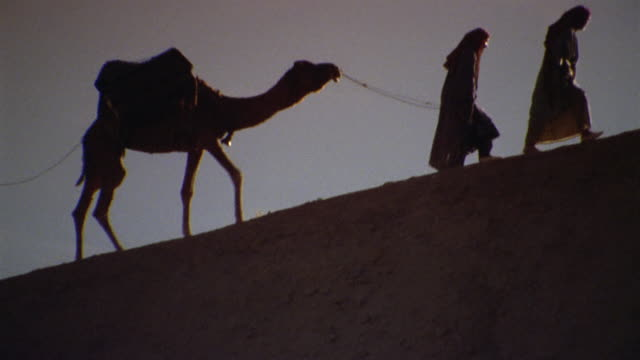 ws la recreation men leading camel up hill / iran - see other clips from this shoot 1007 stock videos & royalty-free footage