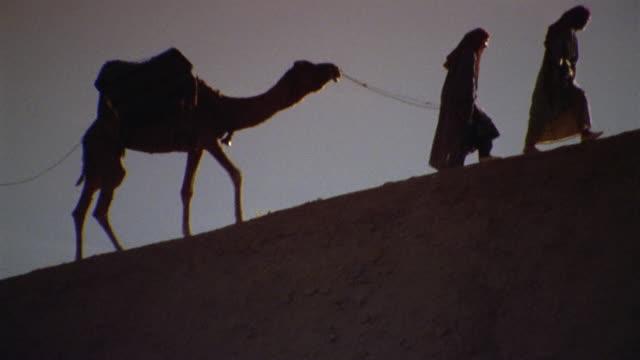 WS LA RECREATION Men leading camel up hill / Iran