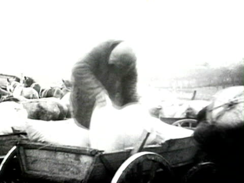 men loading bags on horse carts audio/ russia - anno 1928 video stock e b–roll