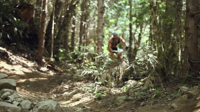 WS Men mountain biking through forest / Squamish/Whistler, British Columbia, Canada