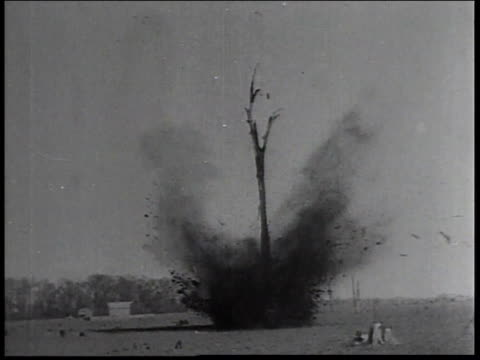 1934 montage men of the civilian conservation corps using explosives to clear tree trunks / united states - civilian conservation corps stock-videos und b-roll-filmmaterial