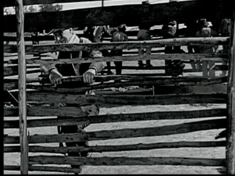 1925 b/w montage ms ws pan ha men on horseback riding across plains during land rush in 1889, man escaping out of corral and horse riding through plain / santa clarita, california, usa - santa clarita stock videos & royalty-free footage
