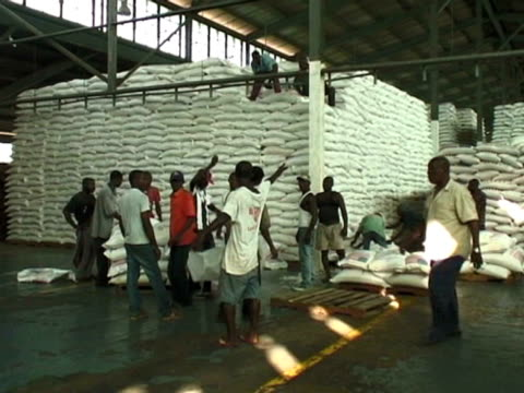 vídeos de stock e filmes b-roll de men organise the distribution of food sacks and aid following devastating earthquake in haiti 10 march 2010 - hispaniola