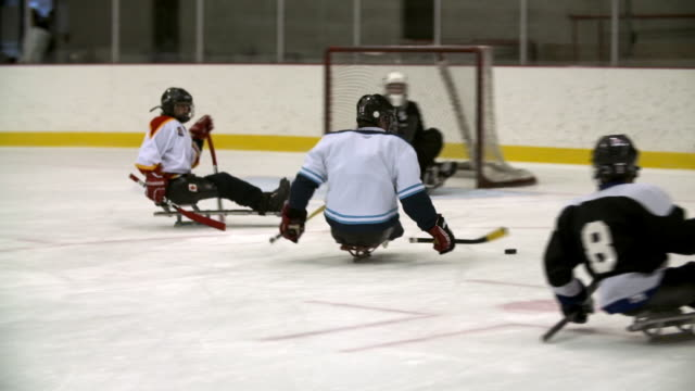 vídeos de stock, filmes e b-roll de men playing sledge hockey (sled hockey) - esporte de equipe