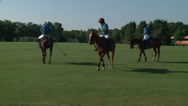 wgn men practicing polo on horses in oak brook illinois on july 15 2018 - dupage county stock videos & royalty-free footage