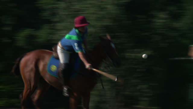 WGN Men Practicing Polo on Horses in Oak Brook Illinois on July 15 2018