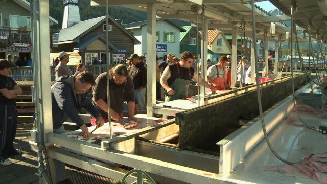 'Men processing freshly caught fish at busy fish cleaning station on boardwalk, sunny day in Seward, Kenai Peninsula, Alaska.  Colourful, picturesque buildings in background.'