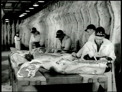 men putting armour's ham/bacon boxes on conveyor belt in warehouse butchers cutting on sides of beef sides hanging bg women cleaning beets in... - rustning bildbanksvideor och videomaterial från bakom kulisserna