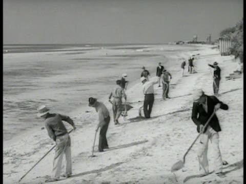 volunteers men raking grass near palm trees people cleaning up raking beachfront women raking grass near palms cu certificate for completed volunteer... - key west stock videos & royalty-free footage