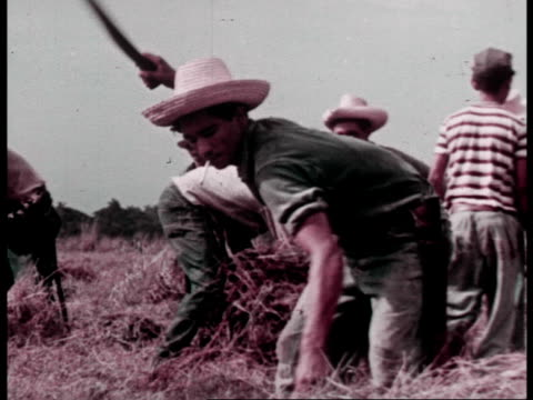 men reading newspapers about the politics of the day / farm workers harvesting crops on a cooperative - propaganda stock-videos und b-roll-filmmaterial