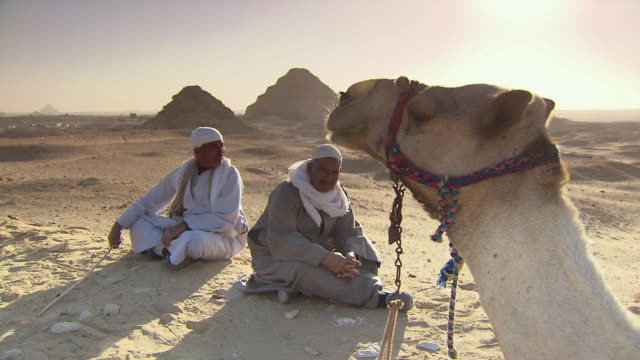 WS Men resting with camel on sandy landscape, Pyramid of Djoser in background / Egypt