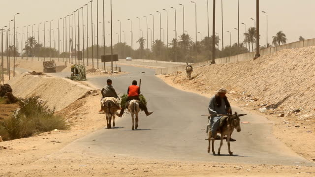 Men riding donkeys down an empty street/ Cairo/ Egypt