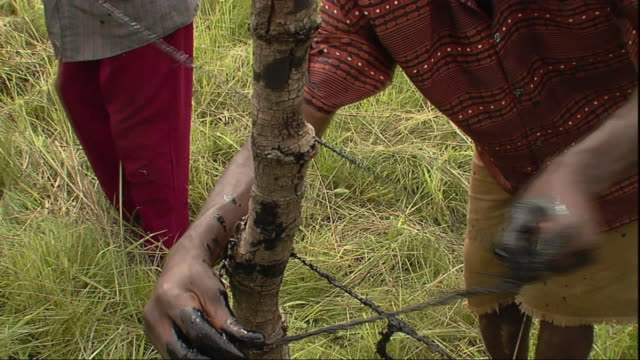 ms men stringing wire around wooden pole / mpika, zambia - dipping stock videos & royalty-free footage