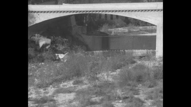 men taking parachute packs off truck and placing them on rail of colorado street bridge in pasadena, ca / men pushing parachute packs off rail of... - カリフォルニア州 パサデナ点の映像素材/bロール