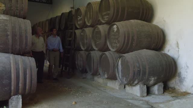 ws men talking and shaking hands / sanlucar de barrameda, andalusia, spain - wine cask stock videos and b-roll footage