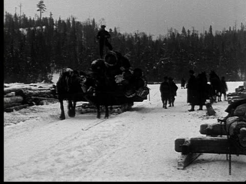 1927 B/W MS MONTAGE WS Men unloading log from horse drawn sleighs, Ontario, Canada