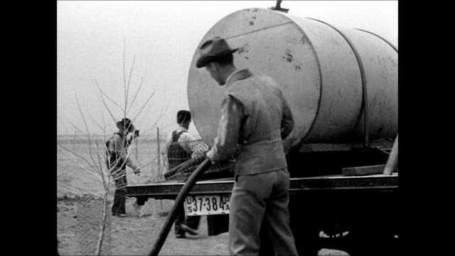 men w/ water tank truck planting trees watering tree area vs new growth vegetation in strip planting area alternating rows of plants amp soil - 1937 stock videos & royalty-free footage