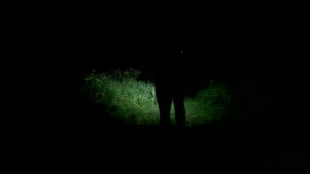 Men walking at night