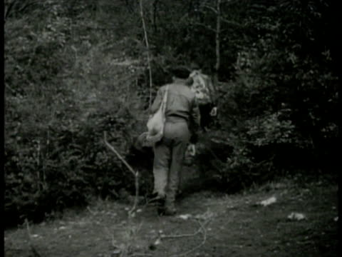 vidéos et rushes de men walking in forest camouflaged dwelling in woods. maquisards walking single file in woods most wearing basque beret. maquisards sawing wood... - étendue sauvage scène non urbaine